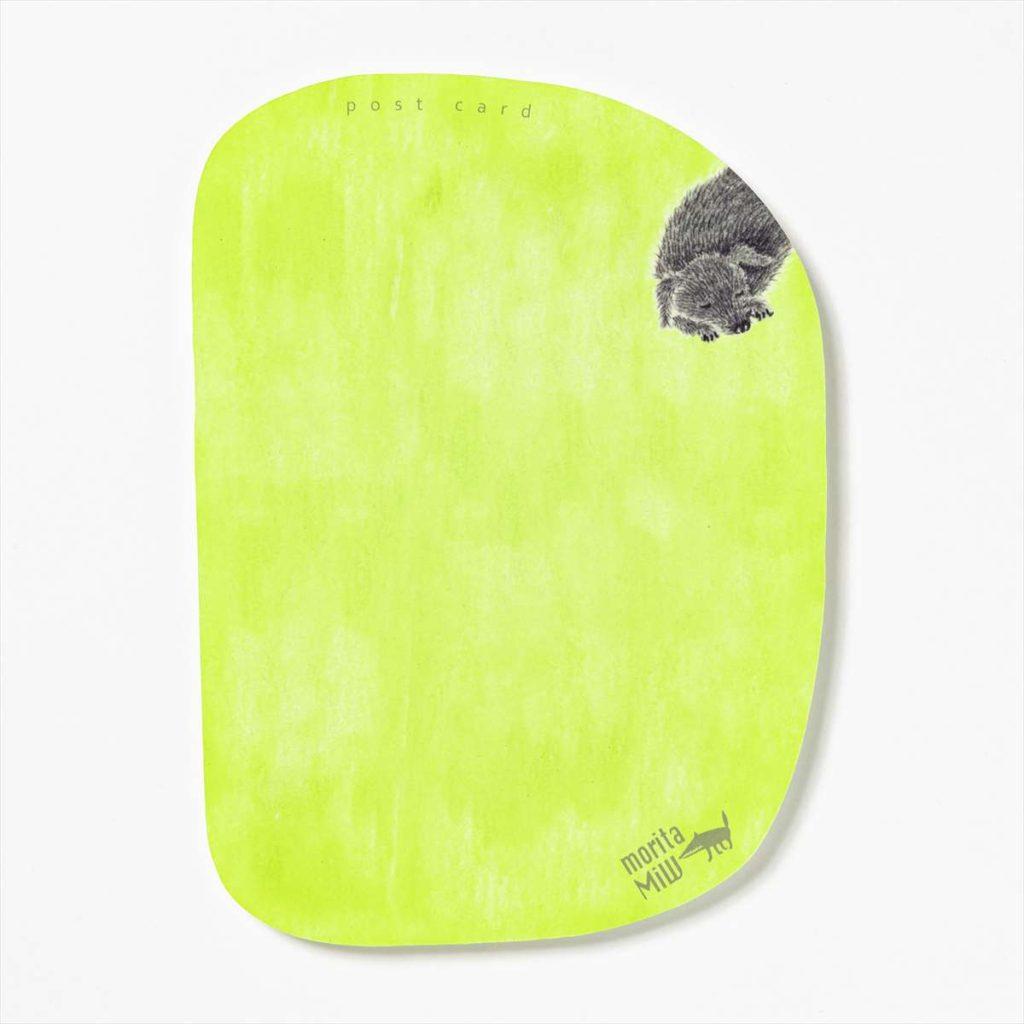ポストカード 窓辺の球根 13.5 x 19.5cm M-67988-00-1カラー写真01
